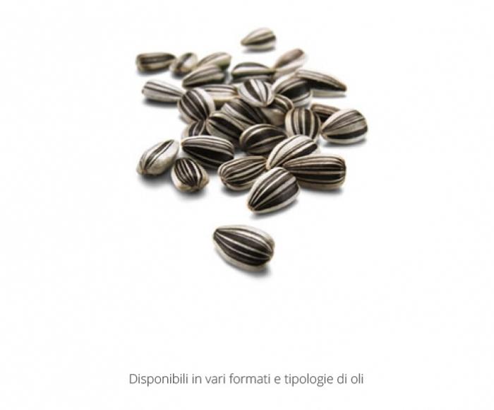 Olio-Girasole-1