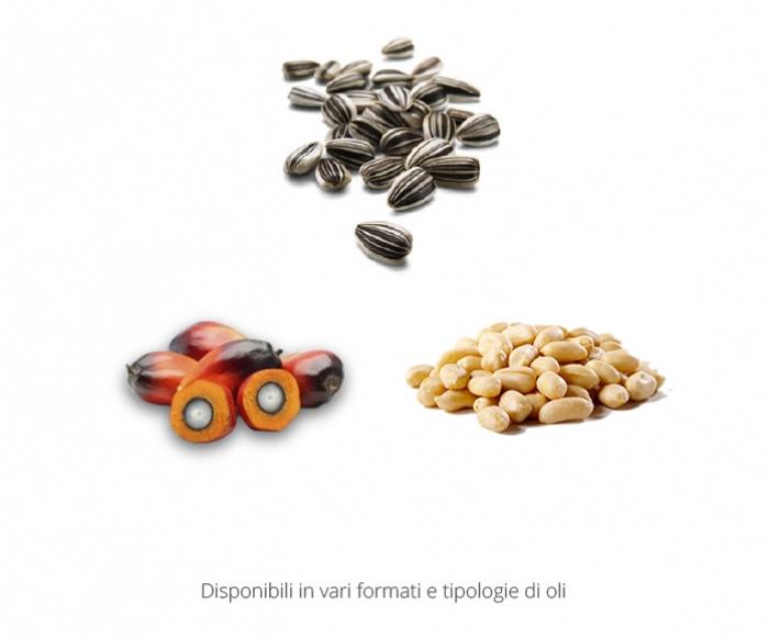 Olio-Friggere-1